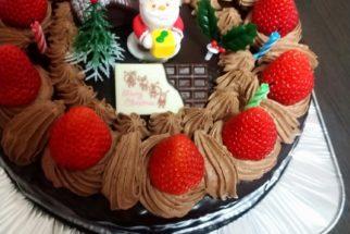 メリー・クリスマス(*˘︶˘*).。*♡